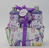 Becasan Nature Cesta Metálica Iris, 6 unidades