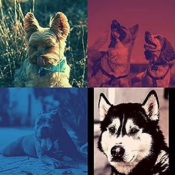Спящие собаки (Воспоминания)