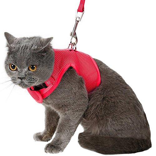 Arnés y correa para gato BINGPET, a prueba de huidas, arnés de malla tipo chaleco, ajustable y suave para pasear al gato
