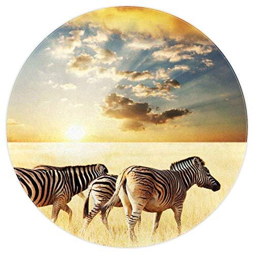 Eslifey Zebra-Teppich, rund, weich, für Wohnzimmer, Schlafzimmer, Kinderzimmer, Wohnzimmer, Wohnzimmer, Wohnzimmer, Wohnheim, 122 x 122 cm, Polyester, Multi01, 4ft-120cm