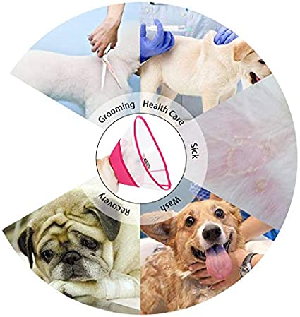 Pup-Town Pet Recovery Translucent E-Collar Soft Edge Anti-Bite//Lick for Small Dogs /& Cats L,Blue