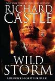 Wild Storm: A Derrick Storm Thriller by Richard Castle (2014-05-13)