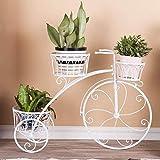 YKJL Support de Fleur en métal Vélo Porte Plante Décoratif Salon Jardinière Fer Forgé Jardin Terrasse Véranda Intérieur xtérieur- C