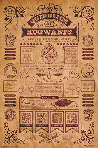 Erik Poster Harry Potter, 61 x 91, 5 cm