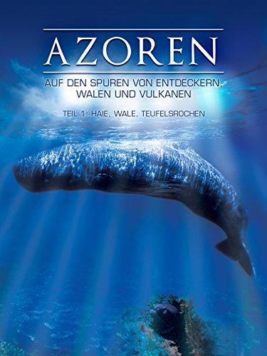 Azoren - Auf den Spuren von Entdeckern, Walen und Vulkanen - Teil 1: Haie, Wale, Teufelsrochen