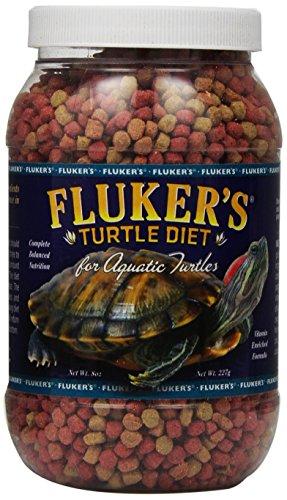 Turtle Food Wild