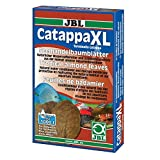 Novopet Catappa XL + 12 Unidades 100 ml
