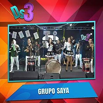 El Deses3 Presenta a Grupo Saya