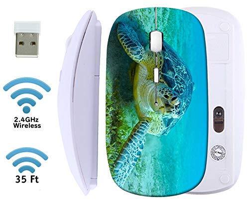 MSD Wireless Mouse White Base Travel 2.4G Wireless Mice with USB Receiver, Noiseless and Silent Click with 1000 DPI for Notebook, pc, Laptop, Computer, mac Book, Image ID: 34785816 Sea Turtle