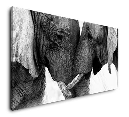 Paul Sinus Art Elefanten 120x 60cm Panorama Leinwand Bild XXL Format Wandbilder Wohnzimmer Wohnung Deko Kunstdrucke