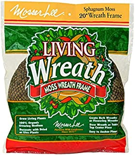 Mosser Lee KEW20B Sphagunum Moss Living Wreath, 20 in.