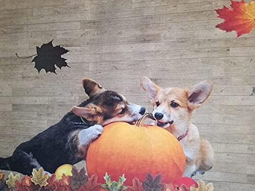 tappeto fondo gommato antiscivolo passatoia a metro bagno e cucina stampa animali cuccioli cane (50x3.50)
