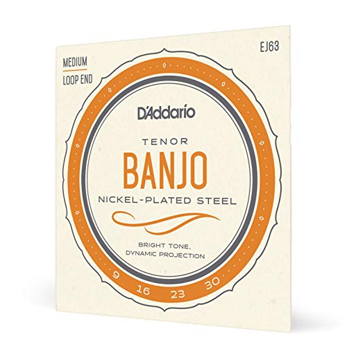 D Addario EJ63 - Juego de cuerdas banjo