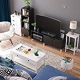 Zoom IMG-1 homfa mobile porta tv in