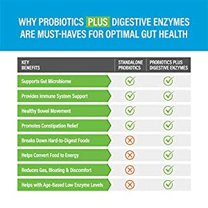 Zenwise Health Digestive Enzymes Plus Prebiotics & Probiotics Supplement, Vegan Formula for Better Digestion & Lactose Absorption with Amylase & Bromelain, 2 Month Supply, 180 Count #3