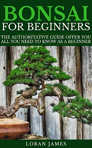 BONSAI FOR BEGINNERS: The Authoritative GUIDE offer you all you need to know as a beginner by [Loran  James]