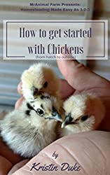 How To Get Started With Chickens by Kristin Duke (Homesteading Books)