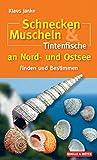Schnecken, Muscheln & Tintenfische an Nord- und Ostsee - Finden und Bestimmen