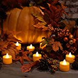 Lumabase 80612 12 Count Battery Operated Tea Lights, Orange