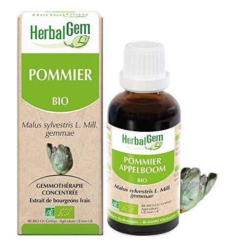 HerbalGem - Pommier Bio - Macérats-Mères de Gemmothérapie Concentrée - 15 ml