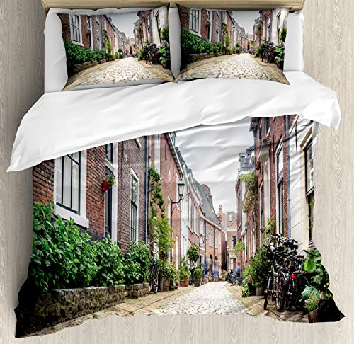 ABAKUHAUS Stad Oude Huizen Dekbedovertrekset, Old City Haarlem, Decoratieve 3-delige Bedset met 2 Sierslopen, 230 cm x 220 cm, Veelkleurig