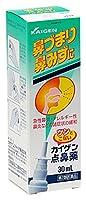 【第2類医薬品】カイゲン点鼻薬 30mL