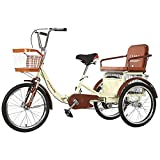 ZCYY Triciclo Bicicleta con Cesta de la Compra Bicicleta Plegable de 3 Ruedas Triciclo para Adultos de 20 Pulgadas para IR de Compras Picnic Deportes al Aire Libre Hombres Mujeres (Color: Beige)