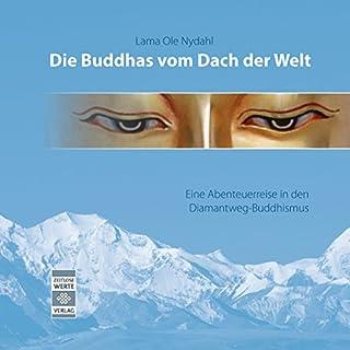 Die Buddhas vom Dach der Welt Titelbild