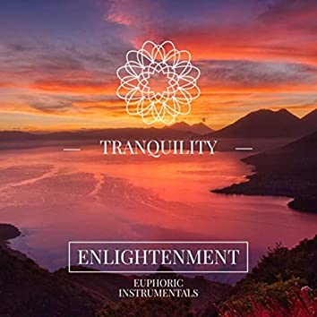 Tranquillity - Enlightenment / Euphoric Instrumentals