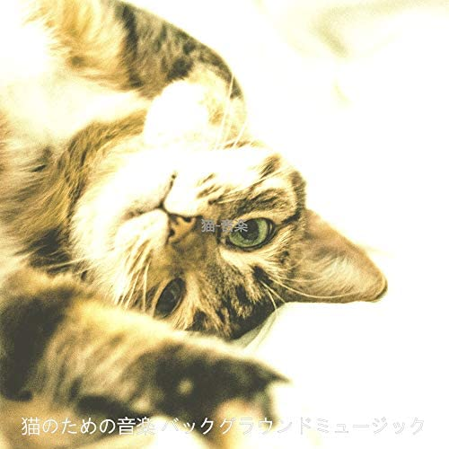 猫のための音楽 バックグラウンドミュージック