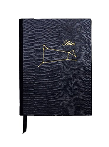 Sloane briefpapier Aquarius sterrenbeeld Notebook