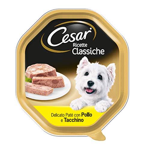 Cesar Rezepte, klassisch, zartes Paté mit Huhn und Truthahn, Futter für Hunde – 14 Behälter