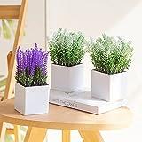 ZENMAG Artificial Mini Potted Plants,Set of 3 Fake Plastic Lavender Plants, Desk Plants for Office Décor Bathroom Décor,White