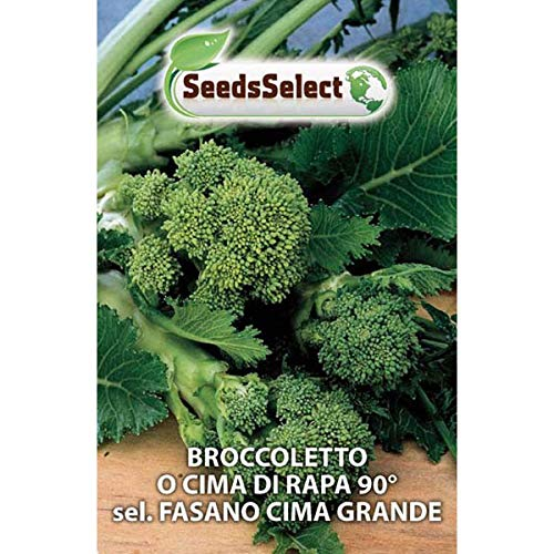 Semi Broccoletto o Cima di Rapa 90° sel. Fasano Cima Grande 500 gr
