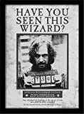 Pyramid International Harry Potter (Sirius Wanted) 30x40 cm