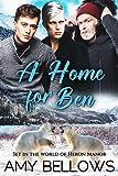 A Home for Ben (Alaskan Pebble Gifters) (English Edition)