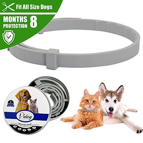 Collare antipulci e anti-zecche per cani e gatti, impermeabile, regolabile, in gomma, sicuro