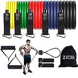 ZICIS Resistance Bands Set, 12er Pack 150lbs Fitness Band Set Expander, für Innen- und Außenbereich Fitness, Kraft, Schlank, Yoga, Heim-Fitnessgeräte für Männer/Frauen