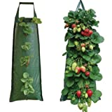 Nutley's 5 Hanging Strawberry Flower Bag Planters Pouch grow fruit herbs flowers UV treated