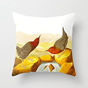 SPXUBZ Vintage Scientific Bird Drinking Botanical Illustration Pillow Cover Decorative Home Decor Nice Gift Square Indoor/Outdoor Pillowcase Size  18x18 Inch Two Sides