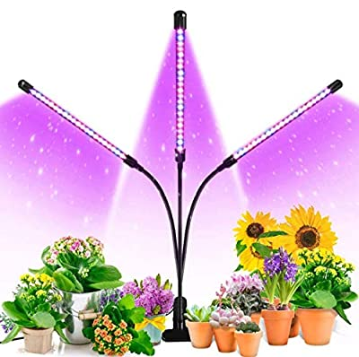 Grow Light, Ankace 3 Head Timing, 5 Dimmable Levels Plant Grow Lights for Indoor Plants with Red Blue Spectrum, Adjustable Gooseneck, 3 6 12H Timer, 3 Switch Modes