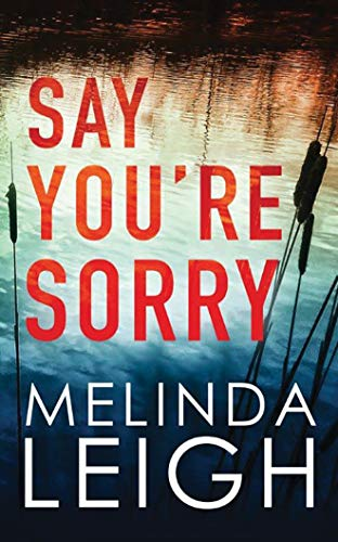 Say You're Sorry (Morgan Dane, 1, Band 1)
