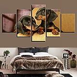 Moderna lienzo Pintura Posters Pintura Raza Decoración for Sala Imprime las fotografías de 5 Piezas Dachshund Perros Arte de la pared modular ( Color : No Frame , Size (Inch) : 30x40 30x60 30x80cm )