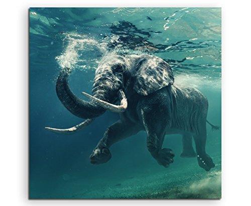 Sinus Art Wandbild quadratisch 60x60cm Tierfotografie – Schwimmender Elefant unter Wasser