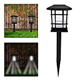 Solar Path Lights Review and Comparison