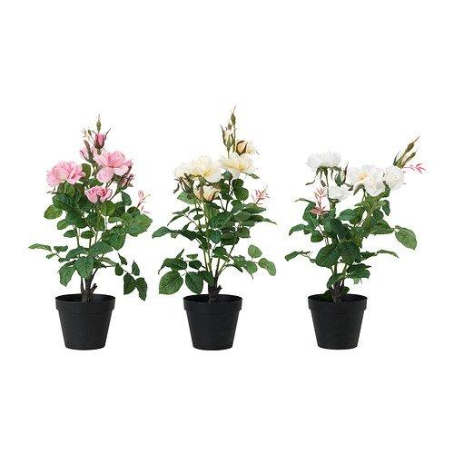Ikea FEJKA -Künstliche Topfpflanze Rose Sortiert - 12 cm