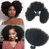 Brazilian Afro Kinky Curly Human Hair 8-22inch 4B4C 1 Bundle 100g Cabello humano rizado afroamericano rizado (1 bundle 14inch, natural black)