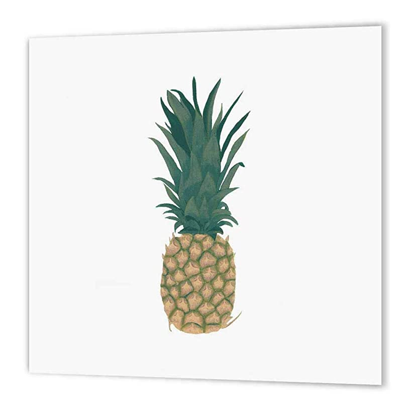 3dRose ht_165770_3 Painting of a Whole Ripe Pineapple with Leaves-Iron on Heat Transfer Paper for White Material, 10 by 10-Inch
