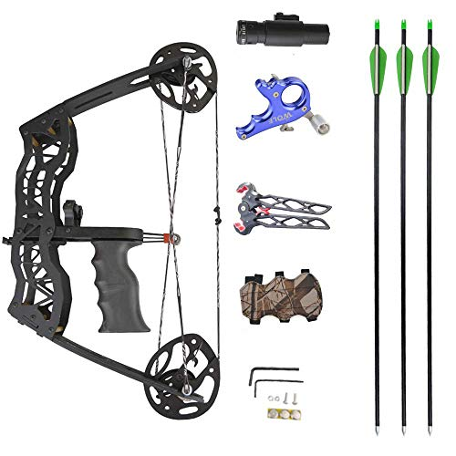 NMCPY Archery Mini Compound Bow and Arrows Set 40lbs Shooting Bows for Adult Youth Hunting Fishing (Black and accesory)