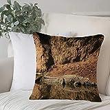 Funda de Cojín,Funda de Almohada Cuadrada para Asiento,Decoración de vida silvestre, cocodrilo del Nilo nadando en el río RoFundas de Almohada para Sofá Decorativas Dormitorio Coche Pulgada 45 x 45 cm
